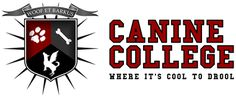 Canine College – Farmington, Michigan  #professionaldogcare#boardandtraining