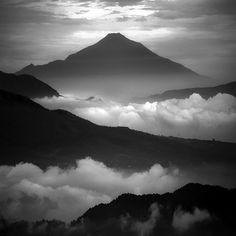 Fotografias en blanco y negro de la naturaleza por Hengki Koentjoro - Antidepresivo