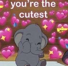 What a cutie 🥰 Freaky Memes, Stupid Funny Memes, Relationship Memes, Cute Relationships, Gf Memes, Meme Meme, Flirty Memes, Couple Memes, Response Memes
