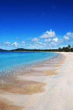 Sun Bay Beach in Vieques. Photo © Mark Franco/123rf via Best Vieques Beaches