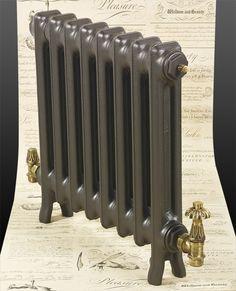 Edwardian 2 Column Slim Cast Iron Radiator 490mm