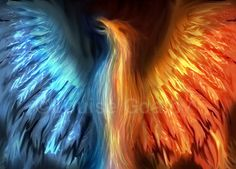 Dual Phoenix by Louise Goalby *o-eternal-o.da ©