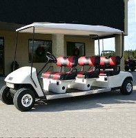Gas Golf Carts, Custom Golf Carts, Flip Flop Tattoo, Handicap Equipment, Golf Party, Womens Golf Shoes, Ladies Golf, Women Golf, Golf Fashion