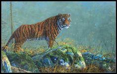 Siberische tijger schilderij siberian tiger painting