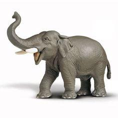 Reproducción animal elefante