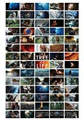 The Tree of Life was an interesting piece by director Terrance Malick. There is very little dialogue between the characters and it has a lot of scenes showing the evolution of the universe. It's almost like a film and documentary in one. Movie Talk, Sean Penn, Jessica Chastain, Brad Pitt, Tree Of Life, Documentaries, Photo Wall, Hollywood Picture, Film Movie