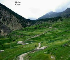 Awesome nature lush green beauty,Harvest field's in Rama valley Astore Hunza Gilgit Baltistan Pakistan