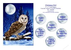 Christmas Barn Owl - 5 x 7 Card Topper With Assorted Greetings  by Elaine Sheldrake This beautiful Barn Owl is certain to please bird lovers everywhere. The 5 x 7 size makes it cheaper to post. Quick and easy card front with the choice of different greetings tags. Which are as followsHappy YuleMerry ChristmasHappy HolidaysFrom Our Family To Your FamilyPeace To The World This ChristmasHome Is Where