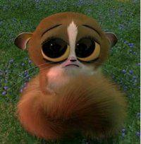 Mort from Madagascar! LOVE HIM