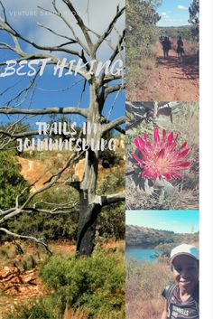 Best Hiking Trails in Johannesburg - Venture Sandy Day Hike, Nature Reserve, Hiking Trails, Africa, Explore, World, Exploring, Afro, Peace