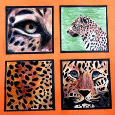 Four views of an animal Artsonia Art Museum :: Artwork by Eilin1