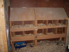 http://www.backyardchickens.com/forum/uploads/31282_oct_19_2009_marans_jg_chicks_coops_005.jpg