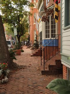 Walking in Annapolis