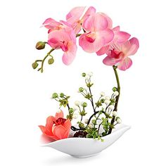 "awesome Specification: plastic handle simulation Phalaenopsis + magnesia porcelain pots (emulation water series) , No maintenance or watering needed NEW TECHNOLOGY: One layer of glue has been sprayed on the silk petals, which makes it look like a real flower in both appearance and touch Size: Length about 9.9"", width of about 3.9"", overall height of about 11"". The stems of Phalaenopsis can be..."