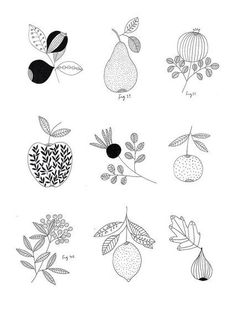 Fruit drawing ideas food illustrations 22 ideas for 2019 Fruit Illustration, Food Illustrations, Botanical Illustration, Botanical Drawings, Botanical Prints, Gouts Et Couleurs, Embroidery Patterns, Print Patterns, Zentangle