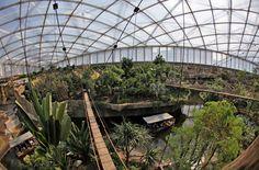 Gondwanaland im Leipziger Zoo