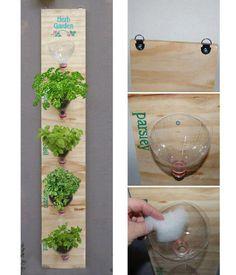 trocando as garrafas por vasinhos...  DIY Plastic Bottle Herb Garden Instructions