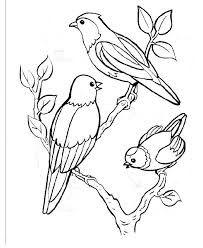 Résultat De Recherche Dimages Pour Dessins Oiseaux Noir Et