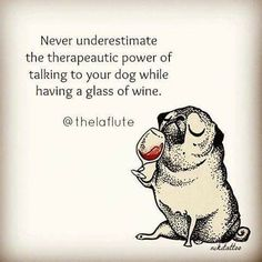 Vines of funny pets. Pugs are fantastic. Vines of funny dogs. Pugs are amazing. Pug Love, I Love Dogs, Cute Dogs, Pugs, Wine Quotes, In Vino Veritas, Dog Mom, Dog Life, Funny Animals