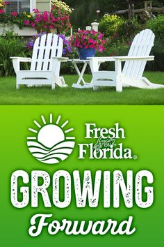It's Time To Get Growing Outdoor plants are ready - Flower Garden İdeas İn Front Of House Florida Plants, Florida Gardening, Florida Landscaping, Cat Garden, Love Garden, Outdoor Plants, Outdoor Gardens, Organic Gardening, Gardening Tips
