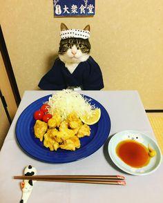 "1,387 отметок «Нравится», 92 комментариев — @rinne172 в Instagram: «とり天 ""Toriten"" (chiken fried tempura style) is considered a symbol of original cooking in Oita. Oita…»"