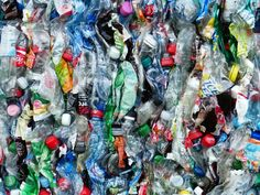 "The Truth About ""BPA-free"" Plastic"