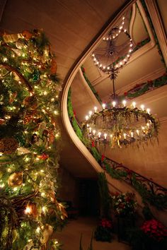 The Grand Staircase at #Biltmore House decorated for Candlelight #Christmas Evenings 2013. Photography by romanticasheville.com