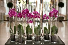 Orchids symbolize rare beauty, love and refinement. Uniquely beautiful orchids are decorationg the gorgeous lobby of Four Seasons Hotel Gresham Palace Budapest.
