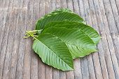 At buy-kratom.us, we specialize in wholesale kratom leaves and powder.