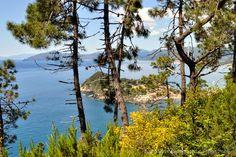 Trekking con i bambini in Liguria: Sentiero Natura Punta Manara