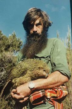 Taken 17 years before Sirocco the famous kakapo even hatched, it shows kakapo Mandy with Gary Aburn (aka Arab). Mandy was the first female kakapo ever to be seen (by a human) in the 20th century.