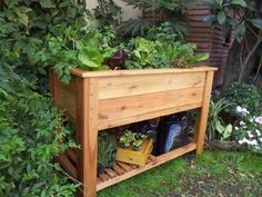 Huerta Organica - Mesa De Cultivo - Patios-terrazas-balcones