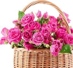 flowers happy birthday - Căutare Google