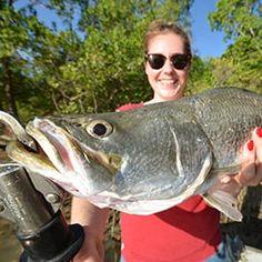 Darwin Harbour Fishing Charters is based in Darwin in the Northern Territory. #darwinfishing http://www.darwinharbourfishingcharters.com.au