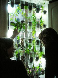 efficient indoor planting...window farm what about using wine bottles instead?