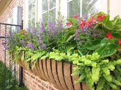 Great Gardening Blog ~ Container Gardening Ideas