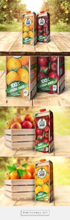 Juz Juice (Concept) - Packaging of the World - Creative Package Design Gallery - http://www.packagingoftheworld.com/2017/06/juz-juice-concept.html