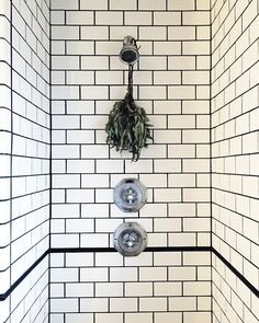 Eucalyptus and steam - Diy Healthy Home Remedies House Inspiration, Store Decor, Bathroom Inspiration, Room Inspiration, Bathroon Ideas, Home Decor, Furnishings Design, Lets Stay Home, Contemporary Bathroom
