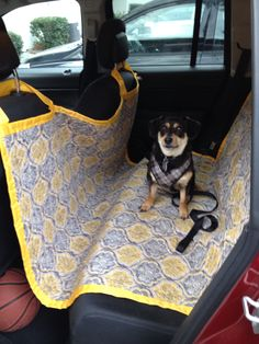 Backseat dog cover. Made it so every trip with my furry friend doesn't need to be followed by a trip to the car wash to vacuum.