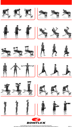 1000+ images about Fitness on Pinterest | Dumbbell workout ...