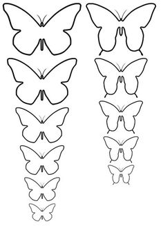 Butterflies Template Different Sizes