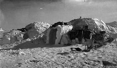 INUIT Igluvijaq at Kitikmeot. Igluvijait (snow iglus) are traditionally associated with people of Canada's Central Arctic and Greenland's Thule area. Other Inuit people tended to use snow to insulate their houses, which were constructed from whalebone and hides.