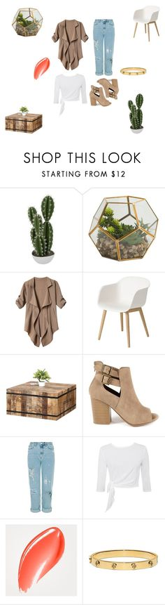 """Untitled #3"" by kyohogrape ❤ liked on Polyvore featuring Abigail Ahern, Muuto, GRETCHEN, Burberry, Tory Burch, chic, Cactus, urban, Trendy and succulents"