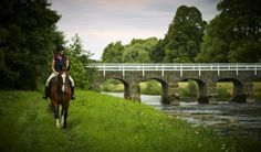 Did you know, the White Bridge at Mount Juliet which spans the River Nore was built in 1762 to link the two estates of Ballylinch and Mount Juliet. Mount Juliet, 5 Star Hotels, Two By Two, Bridge, Horses, River, Vacation, Building, Link