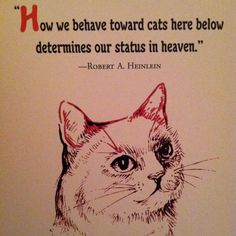 ........how we behave toward All animals