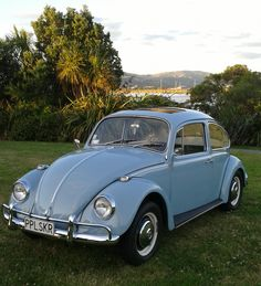 Volkswagen Beetle is one of the most recognizable cars in the world of automobile and which is also deeply ingrained in many pop cultures. Volkswagen New Beetle, Auto Beetle, Volkswagen Golf, Chevrolet Bel Air, My Dream Car, Dream Cars, Wolkswagen Van, Kdf Wagen, Vw Vintage