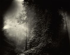 Part of a Sally Mann series where she used old found lenses and 4x5 glass plates.