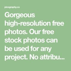 Gorgeous high-resolution free photos. Our free stock photos can be used for any project. No attribution, all CC0 free images.