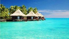 Tahiti Honeymoons - Plan the perfect Tahiti honeymoon and find Oceania honeymoon destinations. Find information about planning your honeymoon in Tahiti. Romantic Honeymoon Destinations, Vacation Destinations, Dream Vacations, Romantic Getaways, Dream Vacation Spots, Honeymoon Spots, Romantic Destinations, Vacation Deals, Honeymoon Ideas