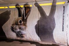 Glasgow Street Art Artists and their Best Murals   The Travel Tester